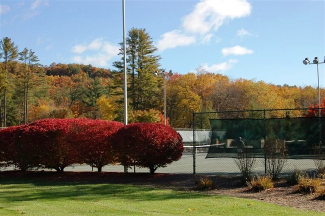 8 Har-Tru Tennis Courts for that Game