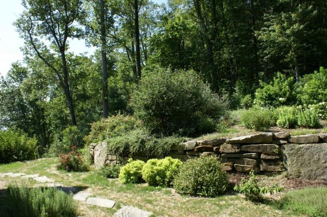 Rural perennial landscape